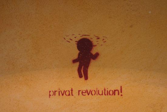 privatRevolution.jpg