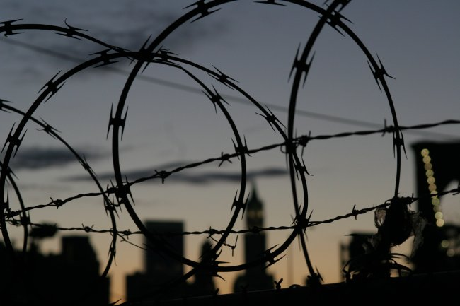barbed_wire.jpg