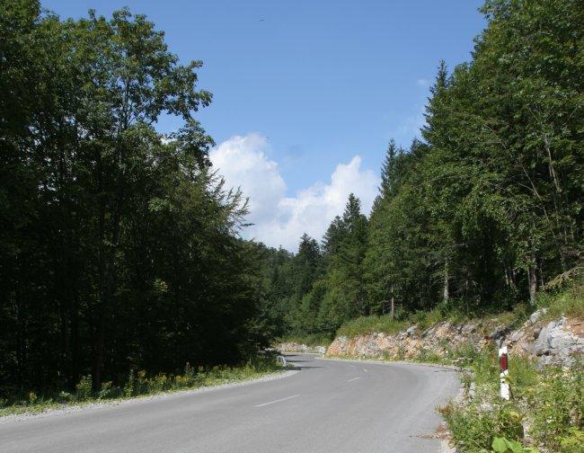 winding_road_1.jpg