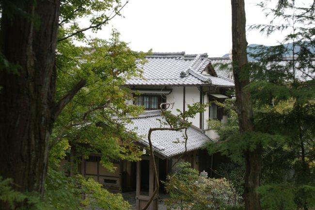 houses_among_the_woods.jpg