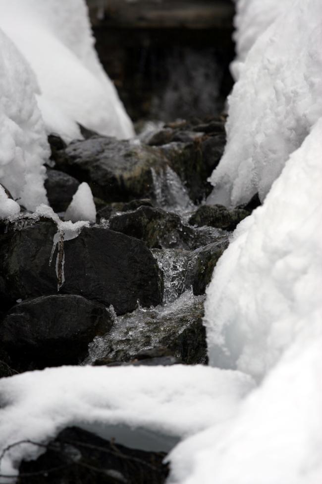water_stream_2.jpg